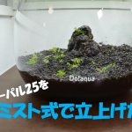【アクアリウム】オーパル25の小型水槽をミスト式で立ち上げる!その3