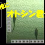 【アクアリウム】オトシンの新規お迎えの様子を動画にしました!
