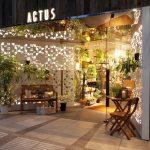 【ボタニカルライフ】渋谷のプランツショップ「ACTUS」と「FUGA」に行ってきたよ