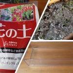 【アクアリウム】水上栽培(田植え!)グロッソスティグマ&ショートヘアーグラス